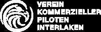 VKPI Logo